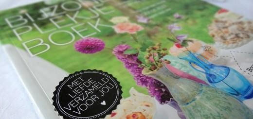 Review Bijzonder Plekje Boek Marleen Brekelmans hotspots