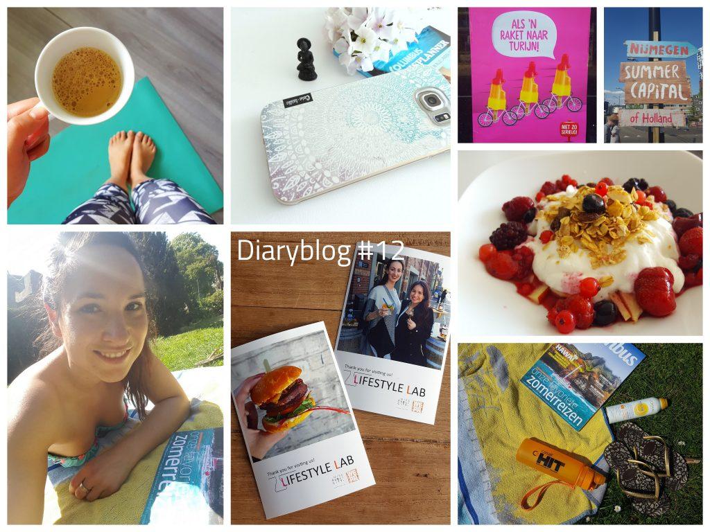diaryblog meer bloggen