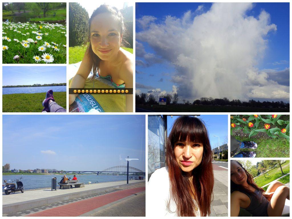 zonnen diaryblog meer bloggen