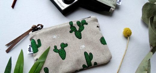 cactus etui viggi handmade all lovely things