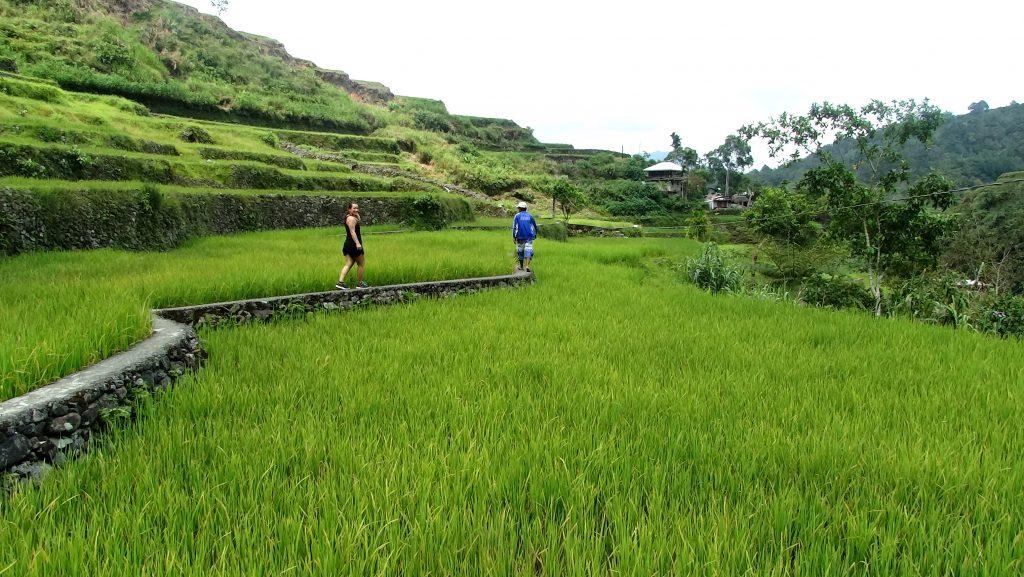 hapao filipijnen hiken door de rijstvelden