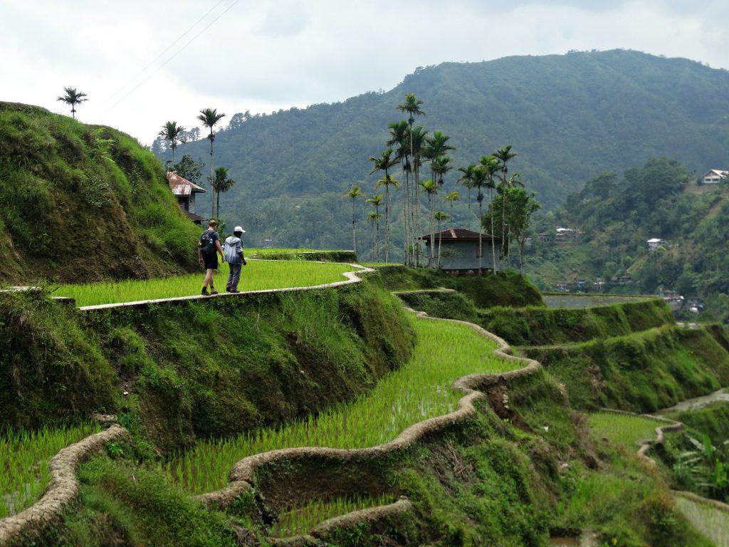 rijstveld hiken banaue filipijnen