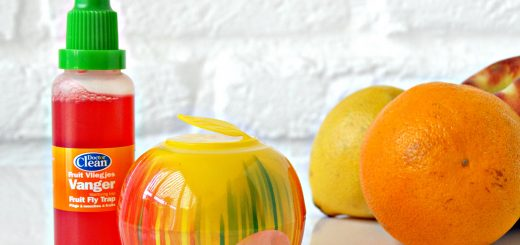 wondermiddel tegen fruitvliegjes