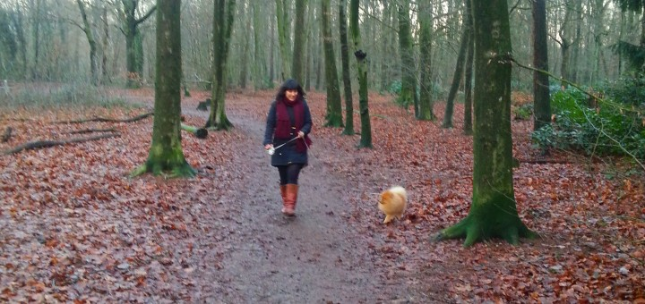 bos wandeling pom hond