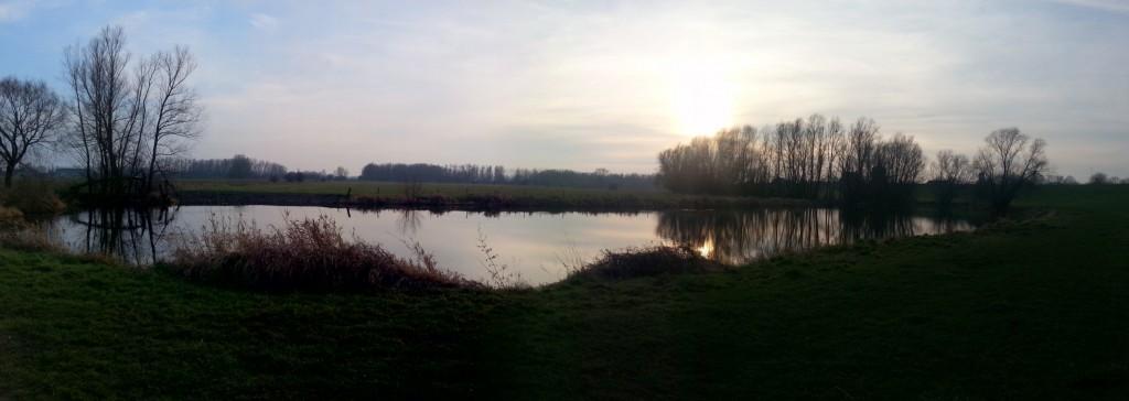 Gendtse polder
