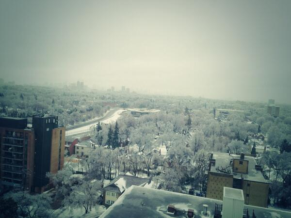 Wit Toronto