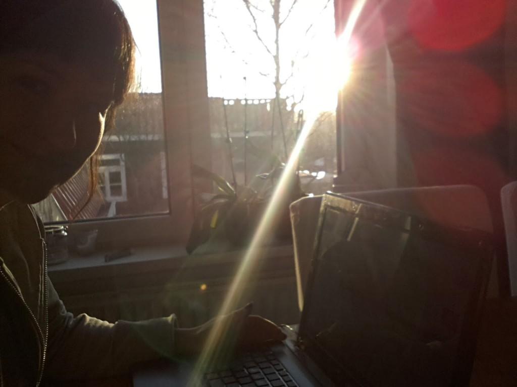 Bloggen in het zonnetje