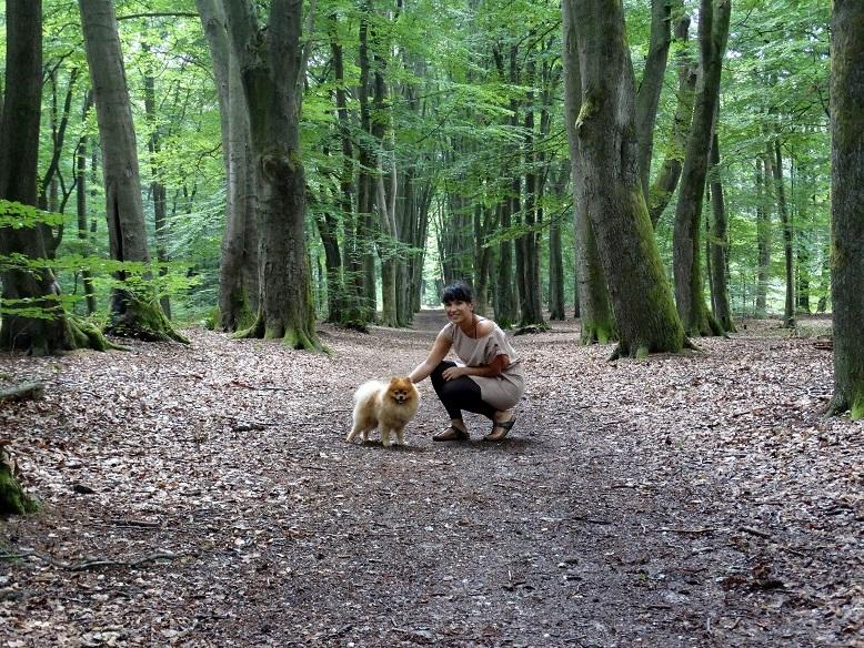 Diary plog wandelen met de hond Pomeranian