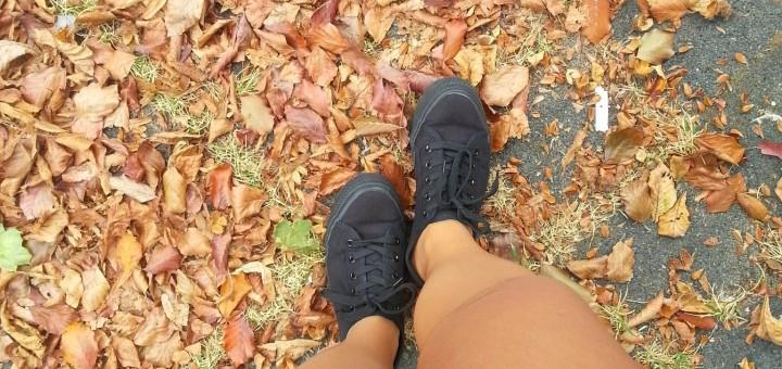 Fall-herfst-diary