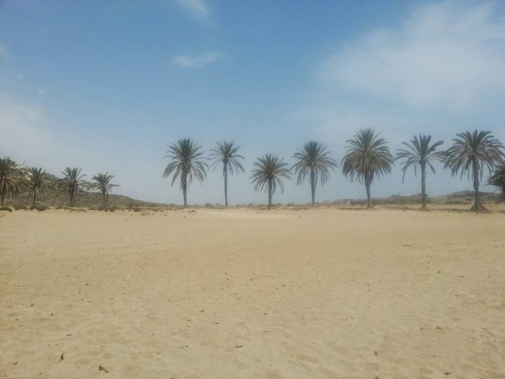 Spanje-Palm-beach- Mazarron- Plog