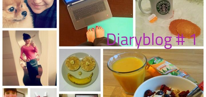 Diaryblog 1