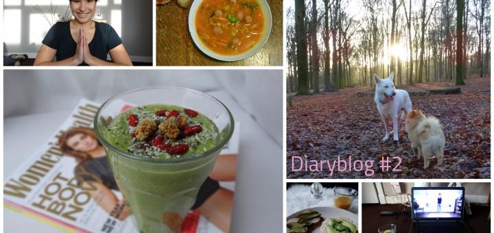 Diaryblog 2
