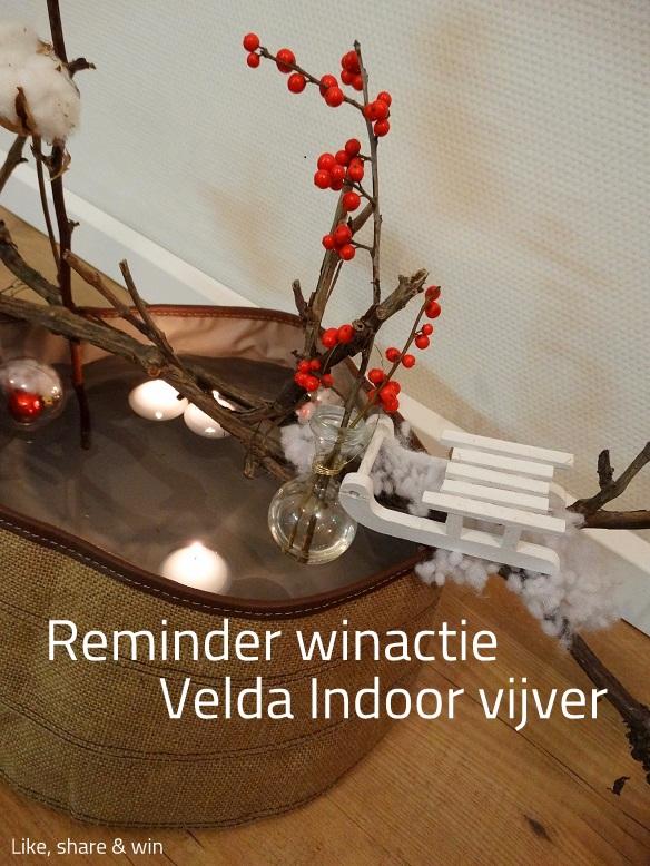 Winactie-Velda-indoor-vijver