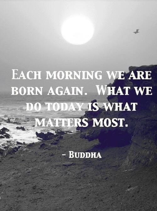 quote buddha today