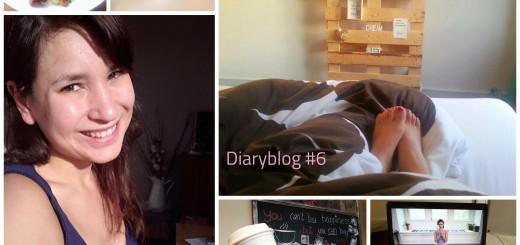 Diaryblog 6
