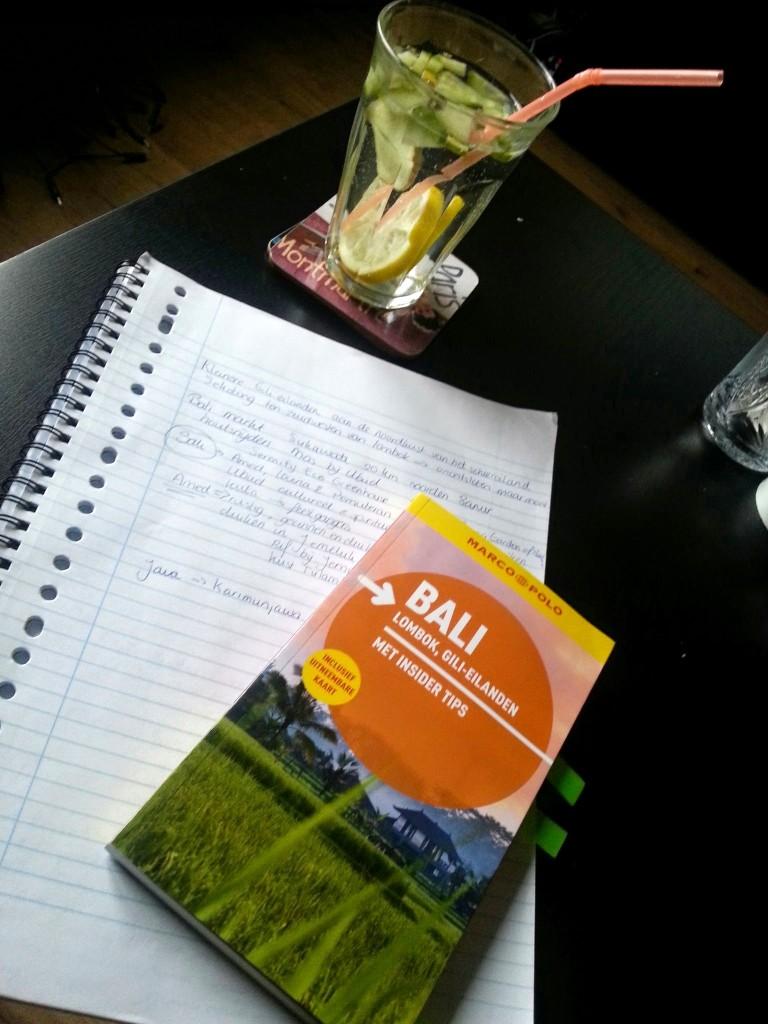 bali reis boek