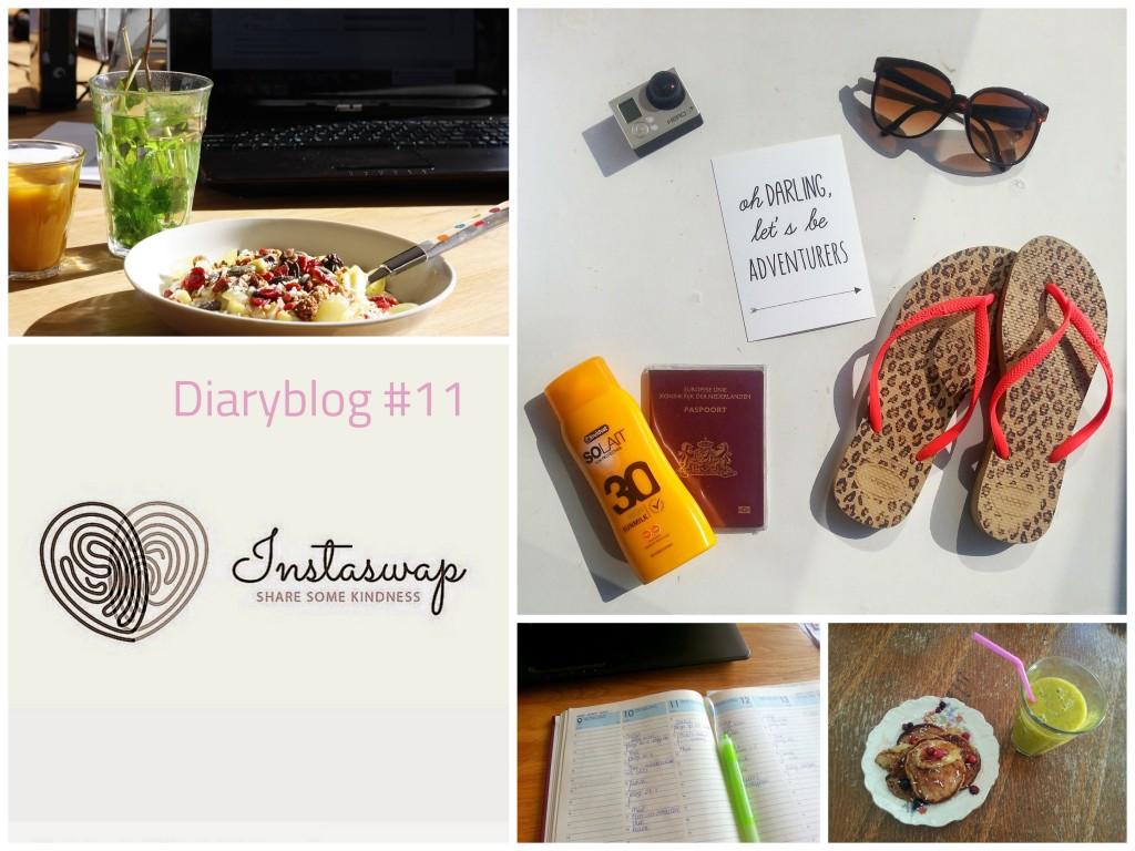 Diaryblog 11