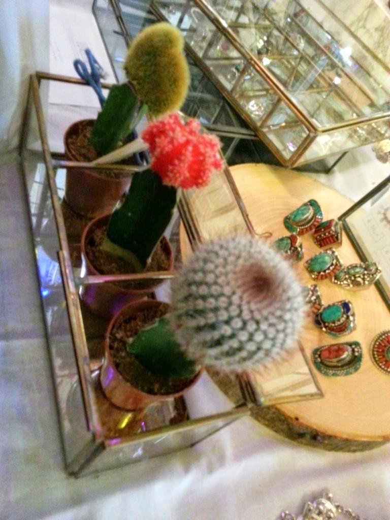 Lovelings-sieraden-cactus-swan-market