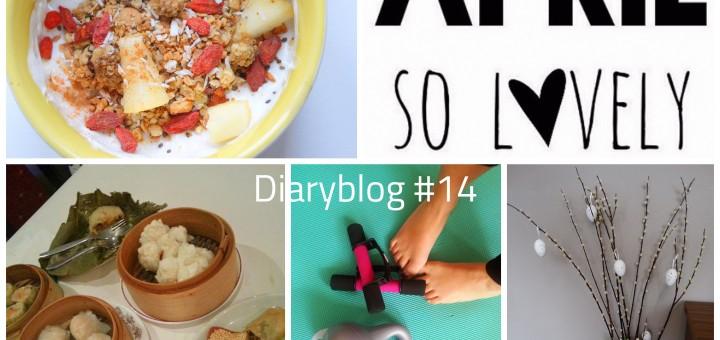 diaryblog 14