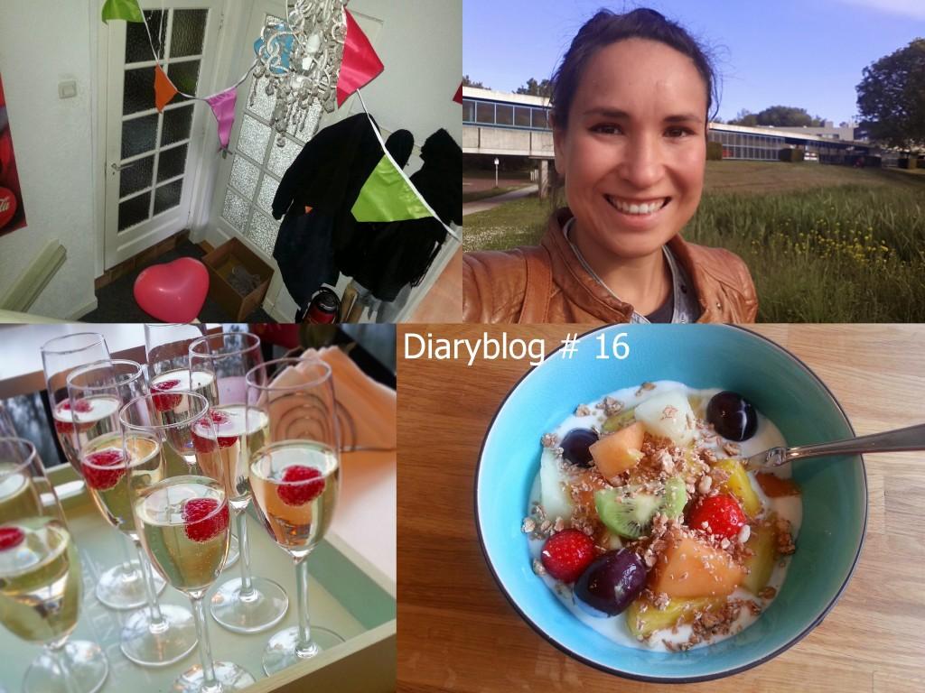 diaryblog 16