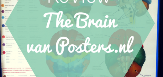 The Brain van Posters.nl _brain _review