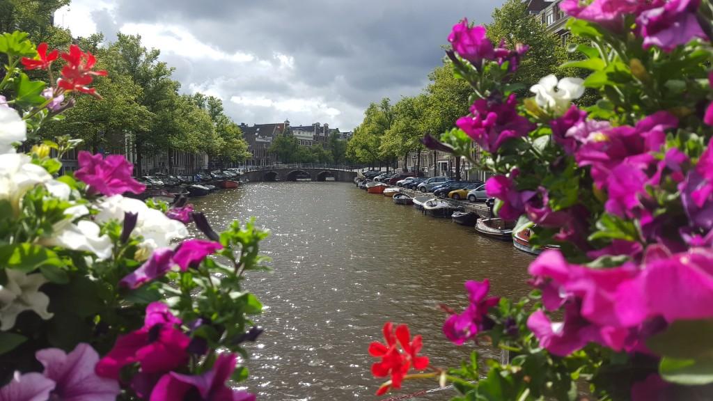 Amsterdamse grachten Nederland bloemen