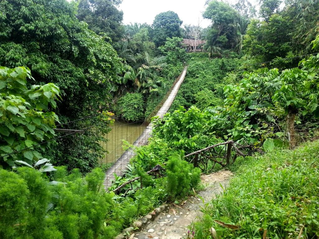 Brug naar Tangkahan guesthouses