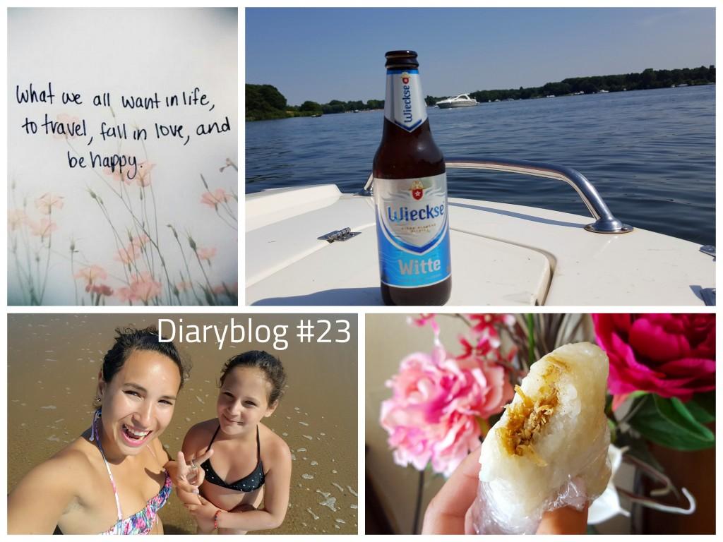 Diaryblog 23 roadtrip door nederland