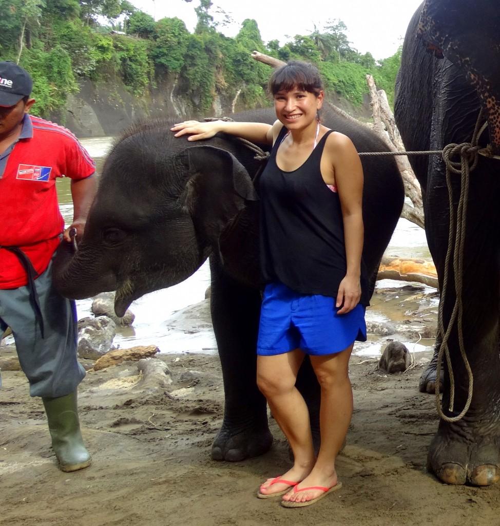 baby olifant tangkahan knuffelen