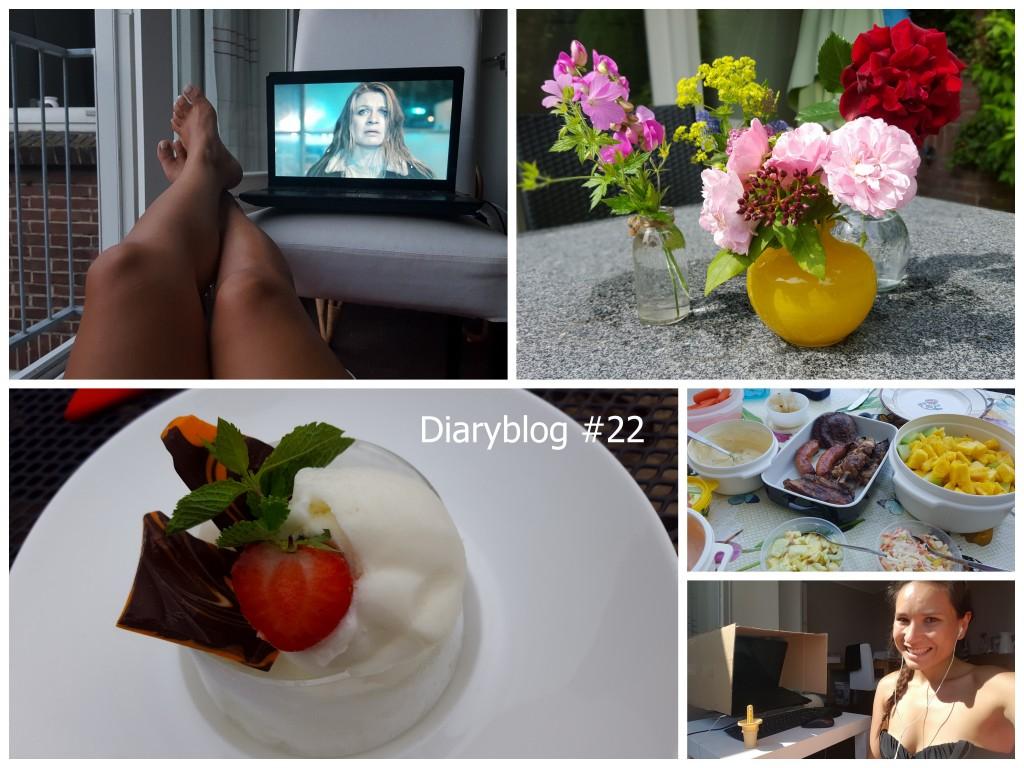 diaryblog 22 the good life