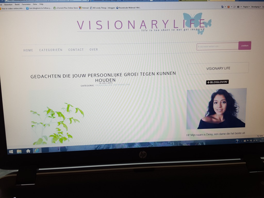 visonarylife blog