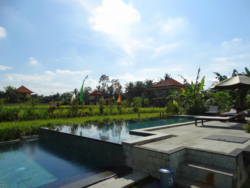 infnity pool Nur guesthouse ubud bali