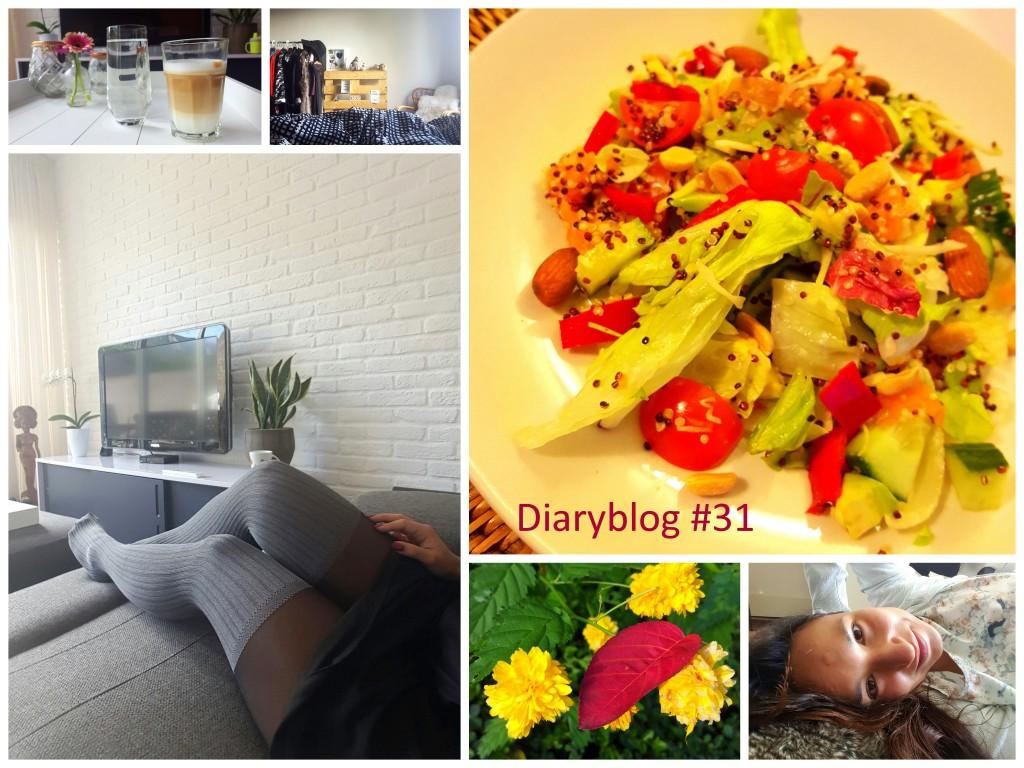 diaryblog 31