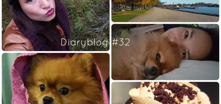 diaryblog