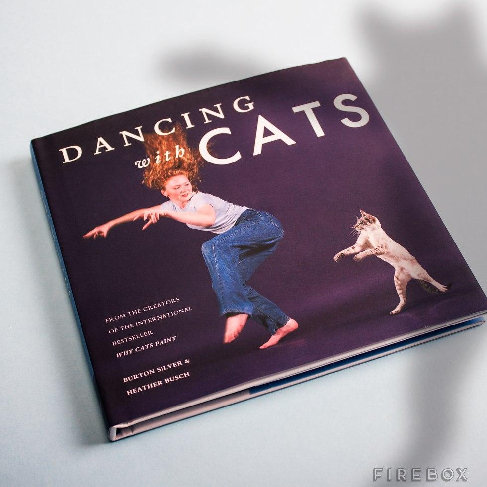 dansen met katten boek