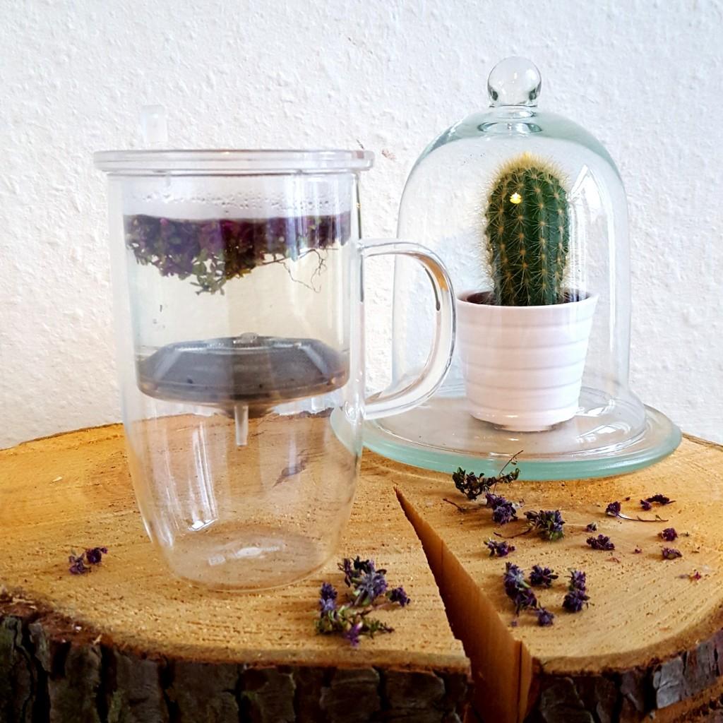 Blóðberg thee uit ijsland