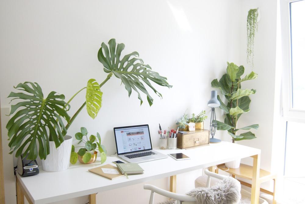 werkkamer-inspiratie-planten-bureau