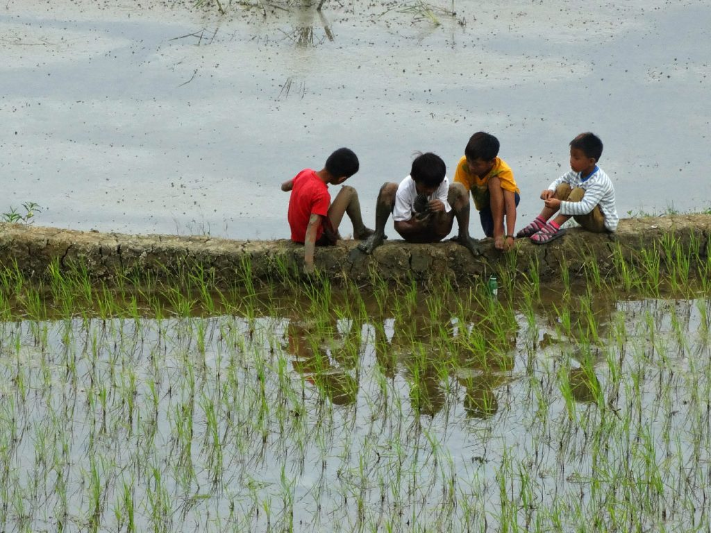 banaue filipijnen rijstvelden