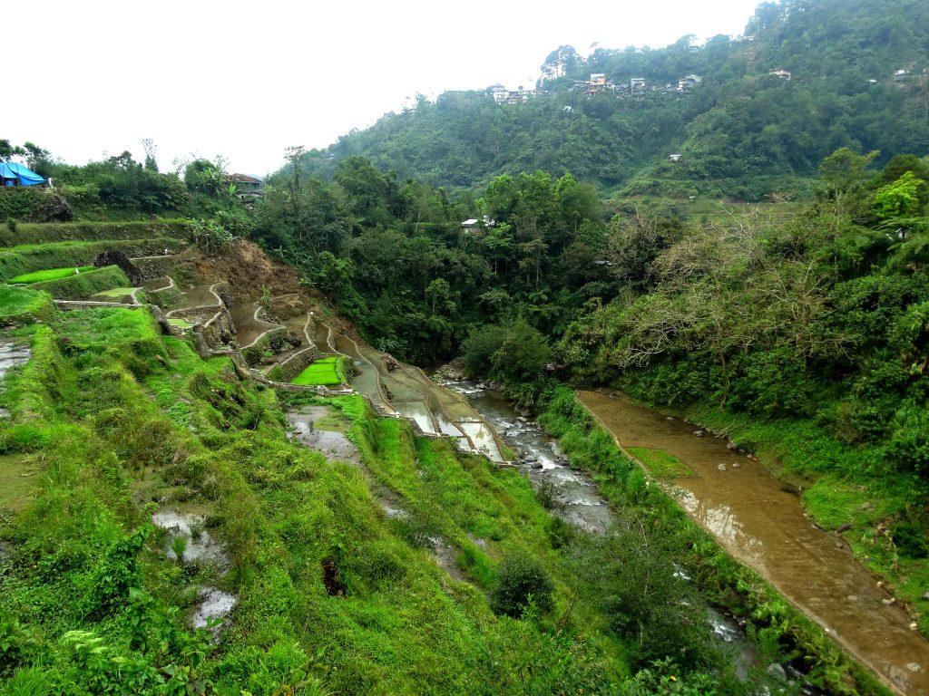 rijstvelden bogah homestay banaue
