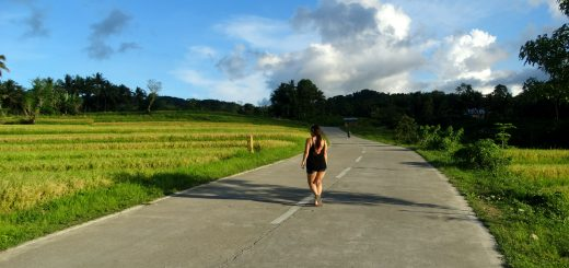 roadtrip bohol rijstvelden