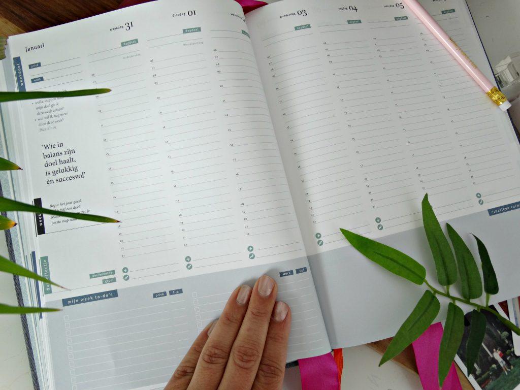 agenda weekplan purpuz planner